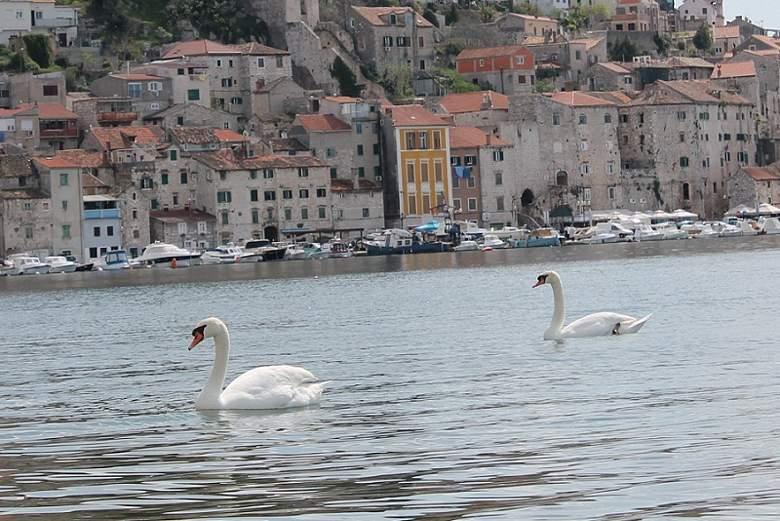 Šibenik: Dok Dolac tone, Grad i Županija mudruju o ovlastima
