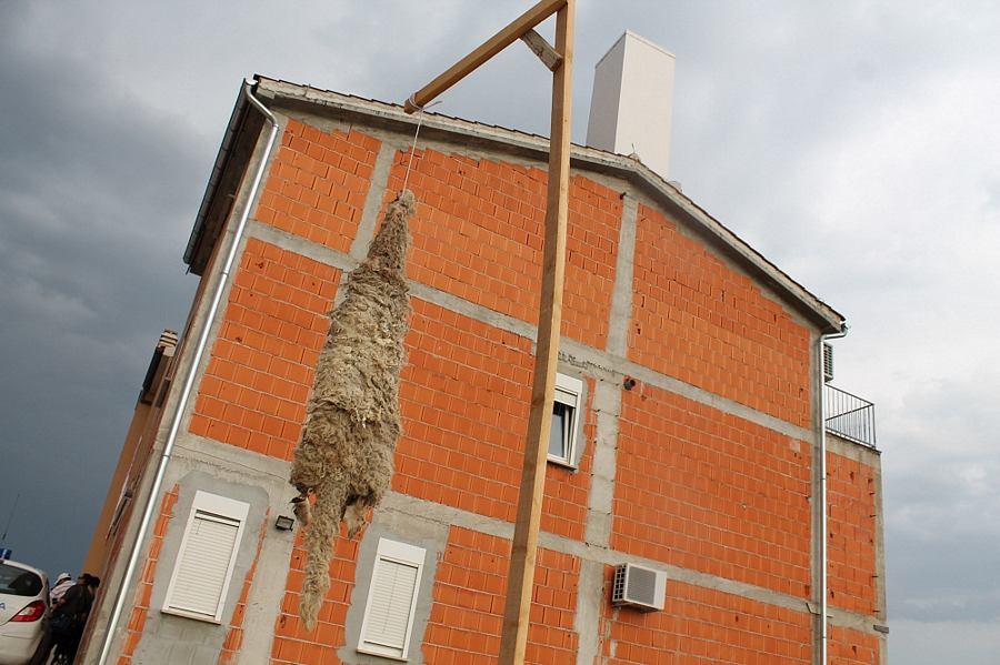 Prosvjed protiv elektromagnetskog zračenja: Gregorovu kožu objesili pred kuću susjeda koji je u dimnjak sakrio baznu stanicu