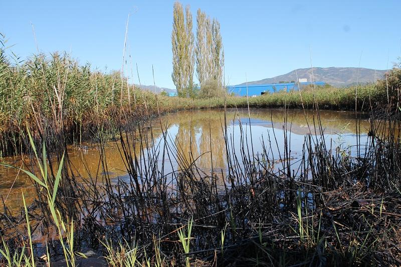 Grad Knin će pokušati dobiti 250 milijuna iz EU fondova za trajnu sanaciju lagune uz pogon DIV-a