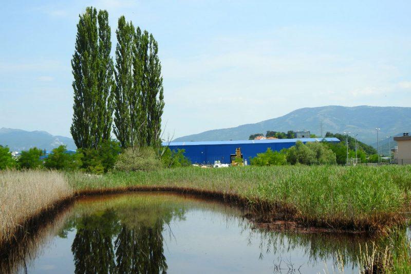 DIV d.o.o. konačno odgovorio na pitanja TRIS-a o onešišćenju laguna otpadnim vodama iz kninskog pogona tvrtke
