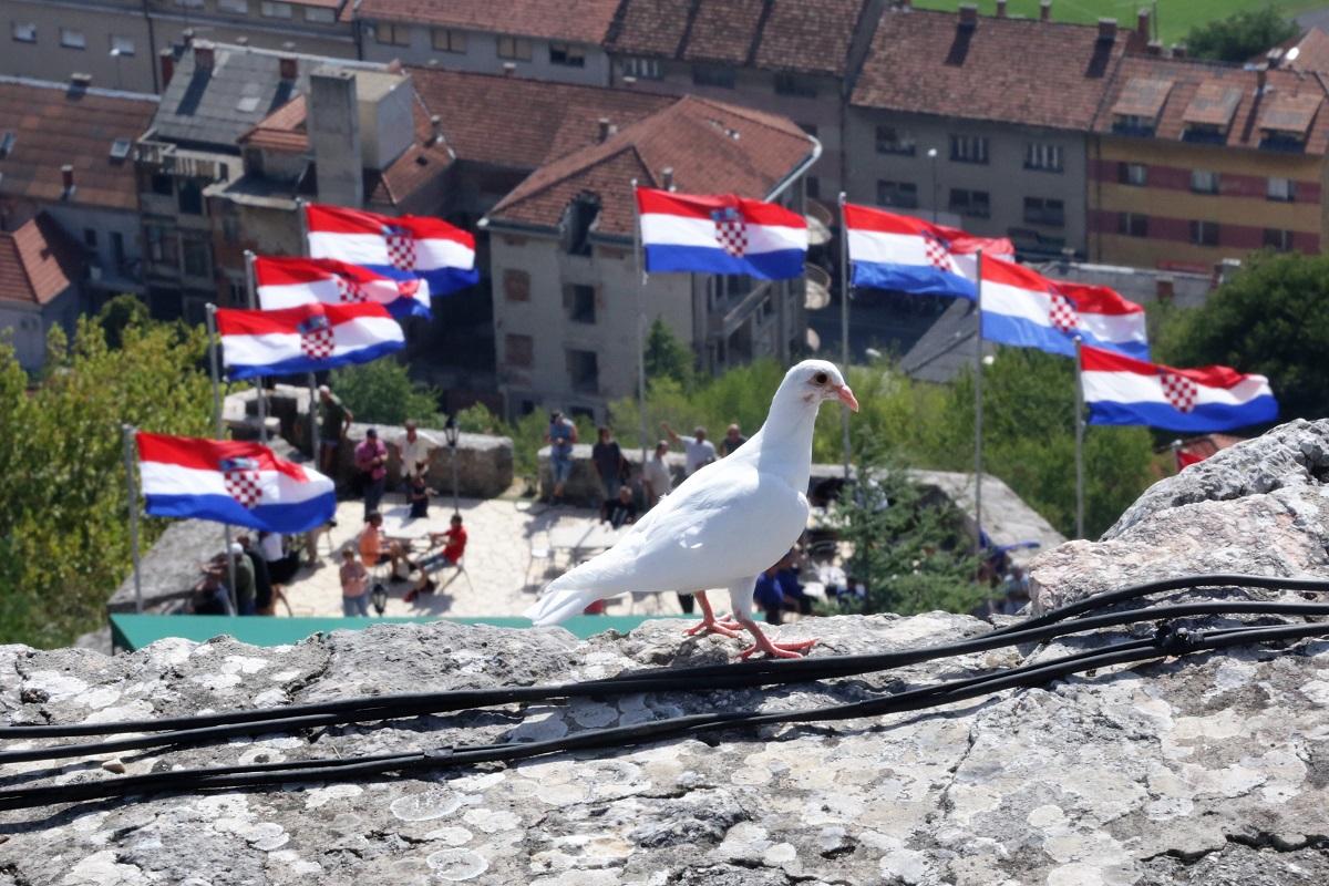 Milošević i Medved, Oluja i Grubori: Geste pomirenja i poštovanja prema svim žrtvama