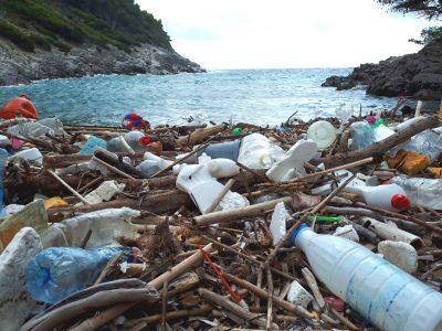 Za smanjivanje plastičnog otpada ključne su velike kompanije koje se još uvijek ne žele odreći jednokratne plastične ambalaže