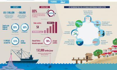 WWF: Neodrživo korištenje prirodnih resursa Sredozemnog mora