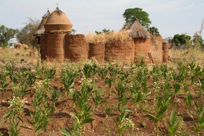 Sreća je lijepa samo u Beninu (XXZ)