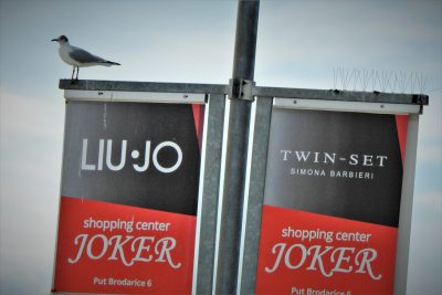 Galeb ne mari za Joker (foto TRIS/G. Šimac)