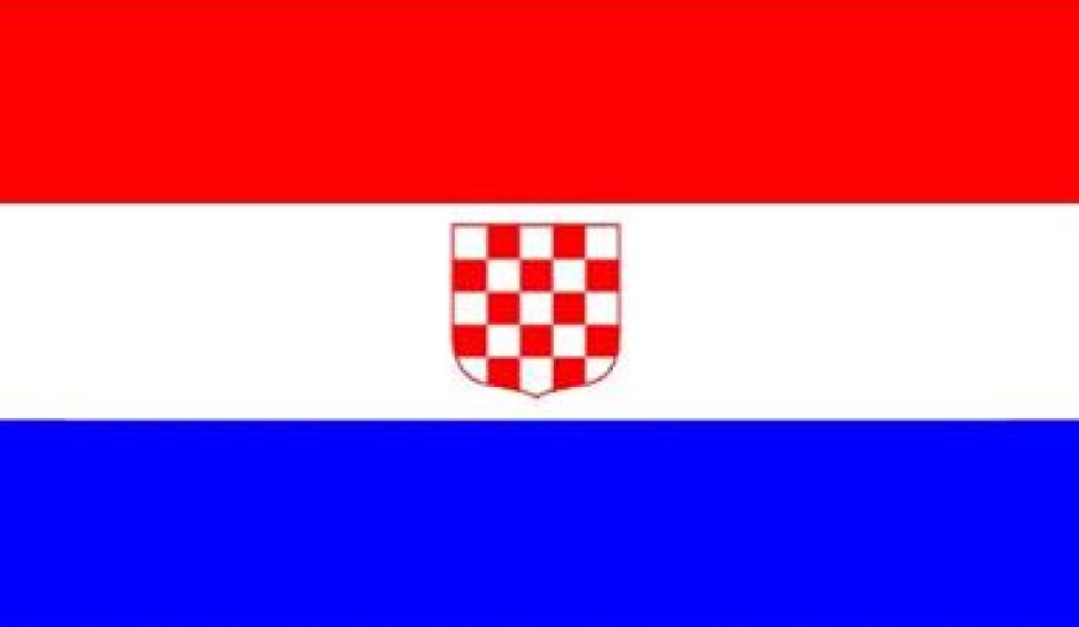 """Hrvatska dijaspora u Clevelandu odlučila: """"Povijesna hrvatska zastava"""" i grb s bijelim početnim poljem kao službeno znakovlje iseljeništva"""