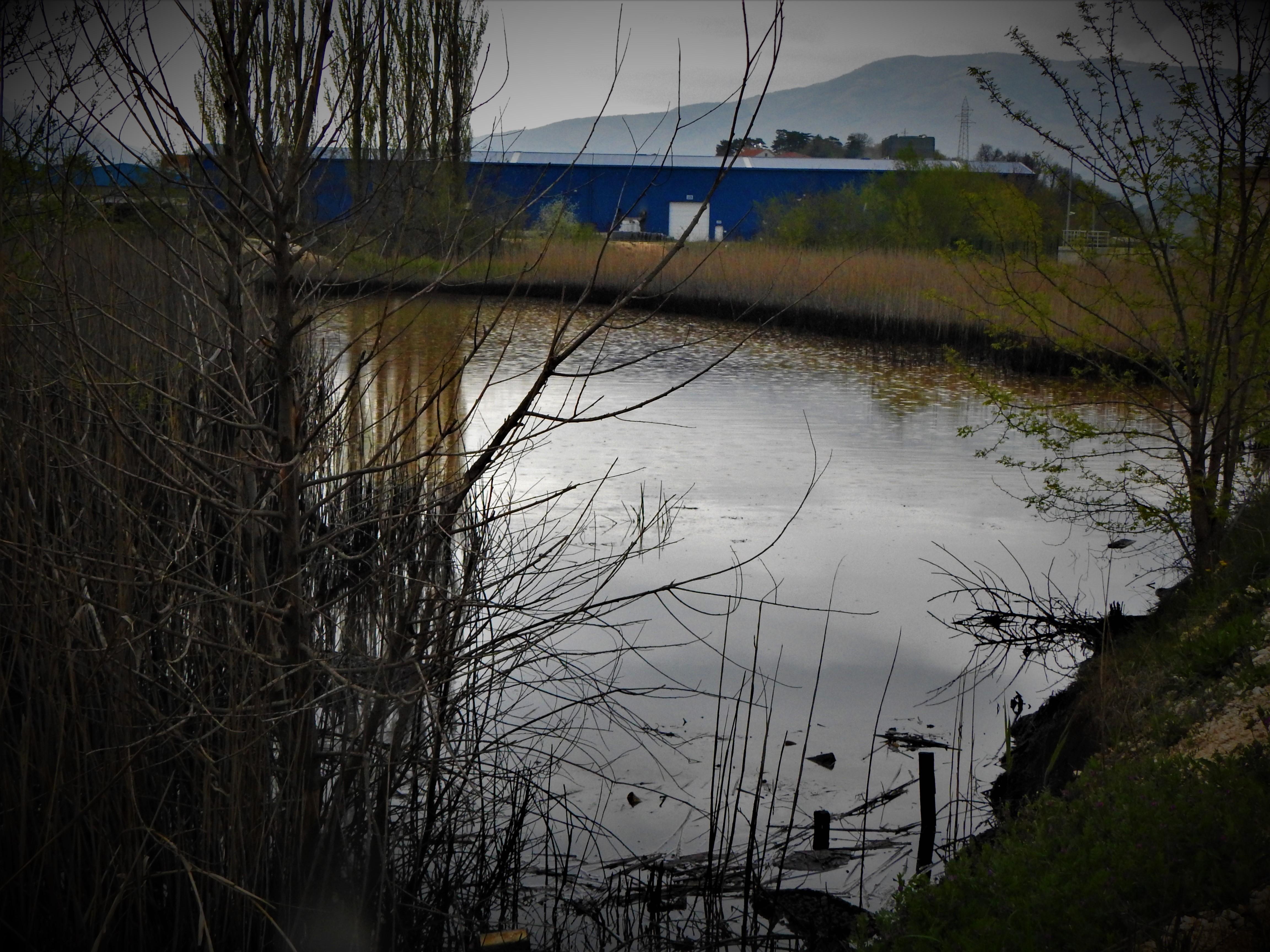 """Kninski vijećnici Ćurić i Čolak u """"otvorenom pismu"""" županu Pauku i gradonačelniku Jeliću: Ne čekajmo kiše jesenske, pokrenimo se !"""