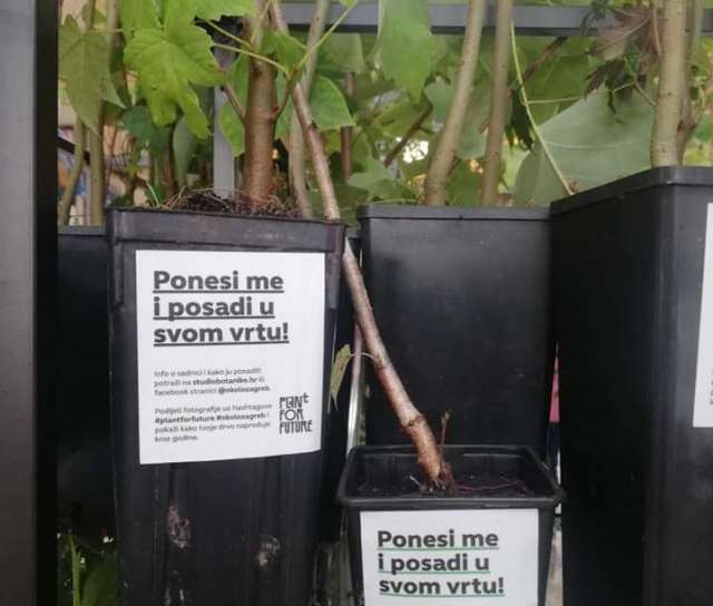 Građanska inicijativa kolektivne sadnje drveća 25., 26. i 27. listopada: Što rade Hrvatske šume? Njima je sječa prioritetnija od sadnje…