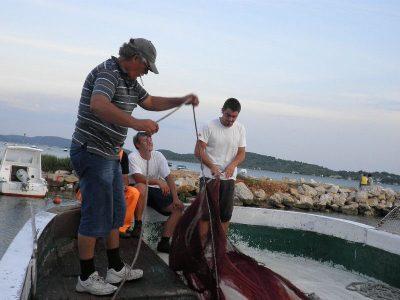 HGK izborila se  u EU parlamentu za opstanak uzgajivača ribe