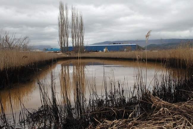 Ekološka katastrofa u Kninu 056