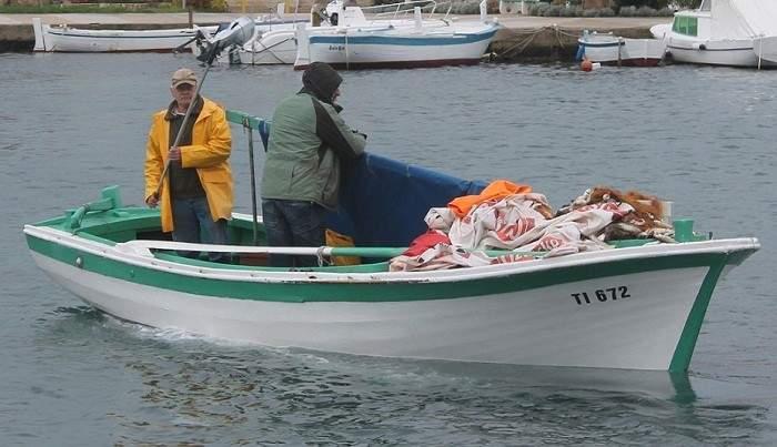 Mali ribari