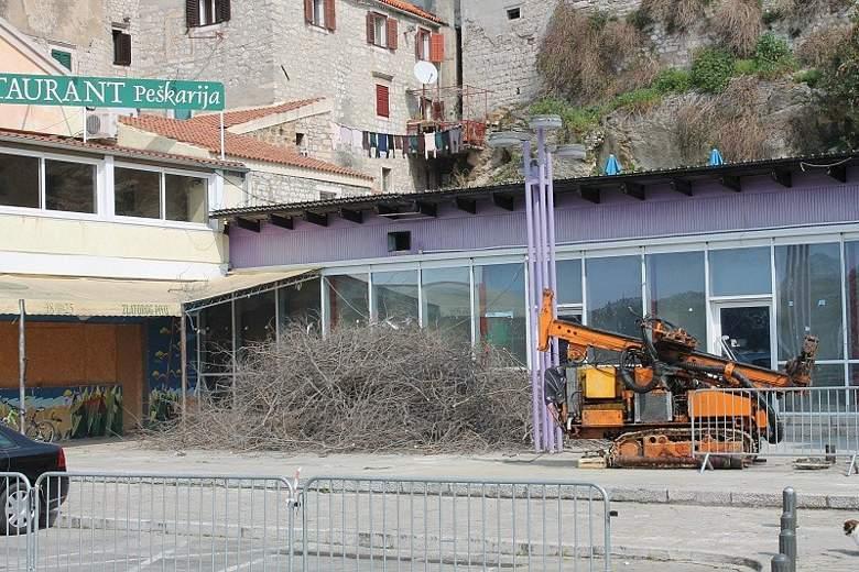 'Investitori' na peškariji srušili fafarinku – jedno od većih stabala u Šibeniku