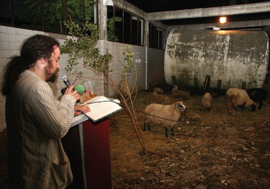Književnik M. Jergović čita , ovce (možda) slušaju (foto http://www.labrovic.com)
