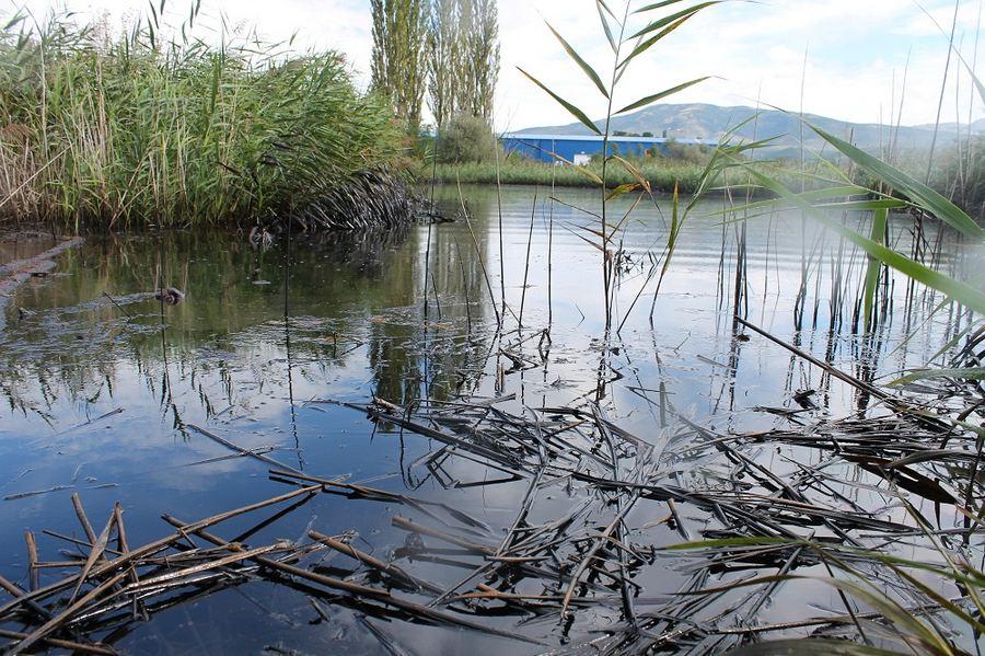 Čega ima u ovom jezeru u srcu Knina?
