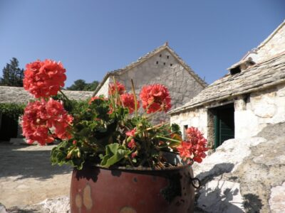 Ruralni turizam-Jurlinovi dvori, snimila: J. Klisović