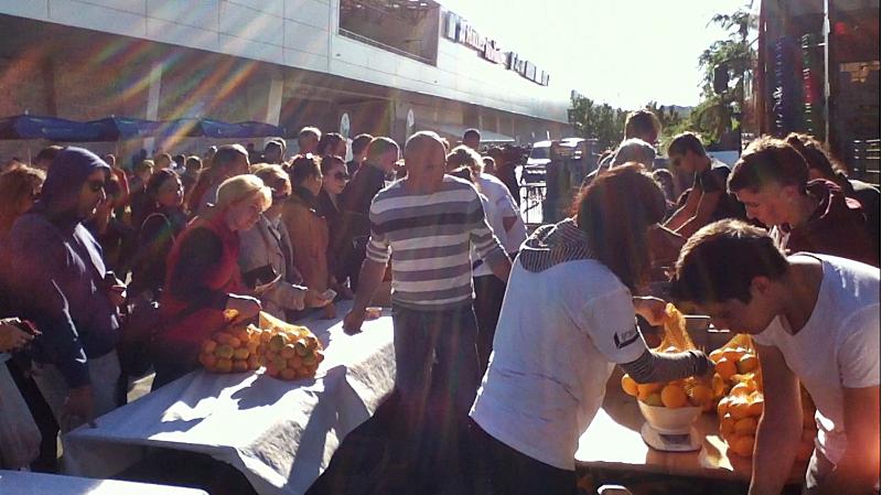 Prodaja mandarina na tržnici u Zadru