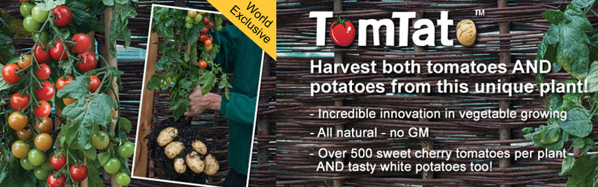 Oglas za krumpidoru
