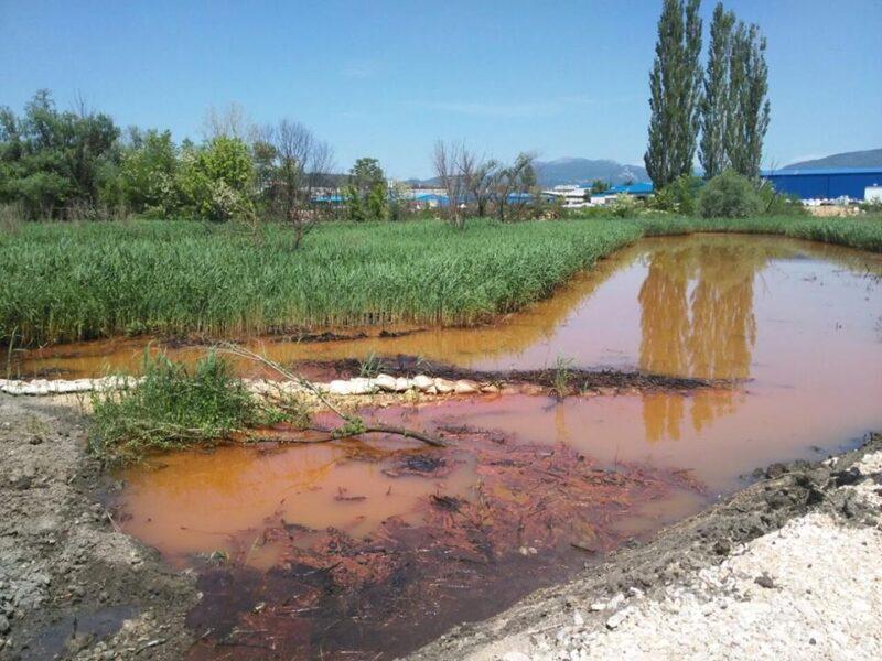 Laguna mazuta danas -kiše su je dobrano isprale i zagađenje odnijele Krkom nizvodno (Foto: Tris)