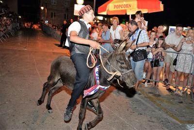 Miško na 49. tibunjskim tovarećim trkama 1. kolovoza ove godine (Foto: Igor Turčinov Stijić)