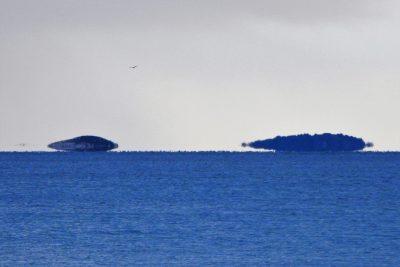 Leti, leti... otok! (foto TRIS/G.Šimac)