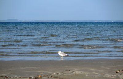 Na slici plaža Spiaza u ranu jesen.foto HINA/ Ivo LUČIĆ