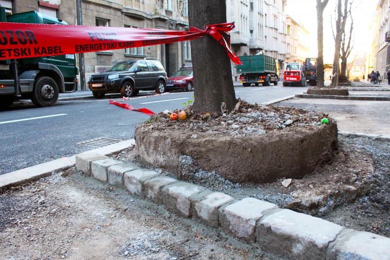 'Zbog šlamperaja srušeno 5 stabala u Gajevoj'