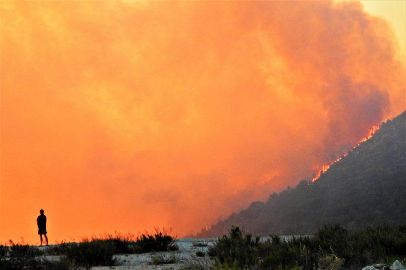 Požar (arhiva) (foto TRIS/G. Šimac)