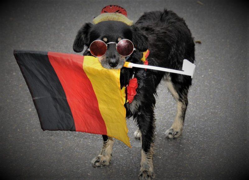 Ilustracija: Pas s njemačkom zastavom (foto Facebook)