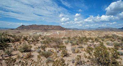 Ilustracija: teksaška pustinja i pustoš duha zlostavljača (foto: Usadesert)