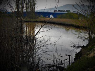 'Laguna' kod tvornice DIV (foto TRIS/G. Šimac)
