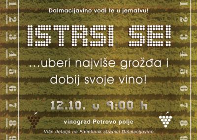 Vinogradi neobrani, nema koga da ih bere: Dalmacijavino poziva obitelji u berbu za marendu i 'personalizirano vino'