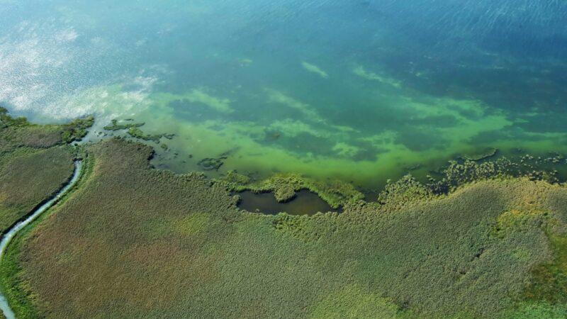 Foto: Park prirode Vransko jezero