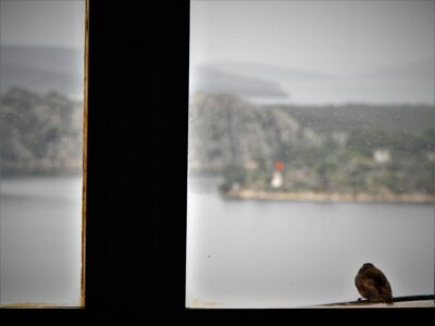 Ilustracija - izolacija  (foto TRIS/G. Šimac)