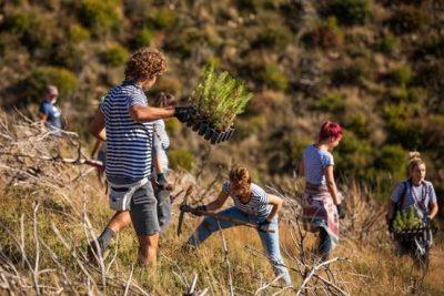 Boranka: Inicijativa pošumljavanja opožarene Dalmacije dobila nagradu Europski građanin
