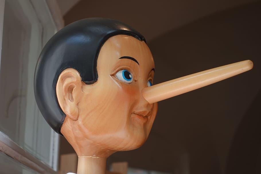Škoroševci, škorojevići i niškor(o)isti: Na sljedećim izborima uvesti obavezan detektor laži
