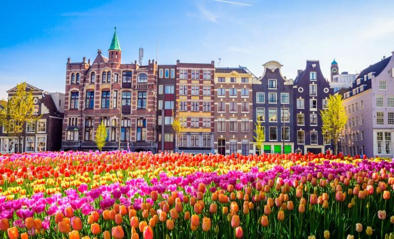 Niziozemska, tzv. zemlja tulipana (foto: internet, nepoznati porijeklo i autor)